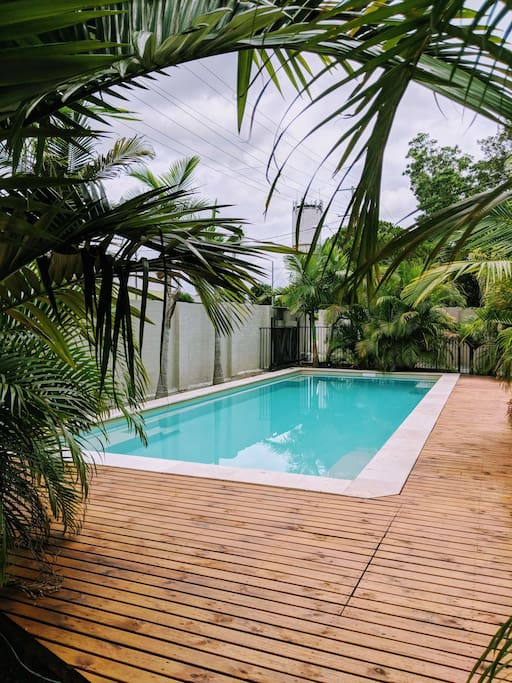 Our outdoor saltwater pool for your relaxing and refreshing :)