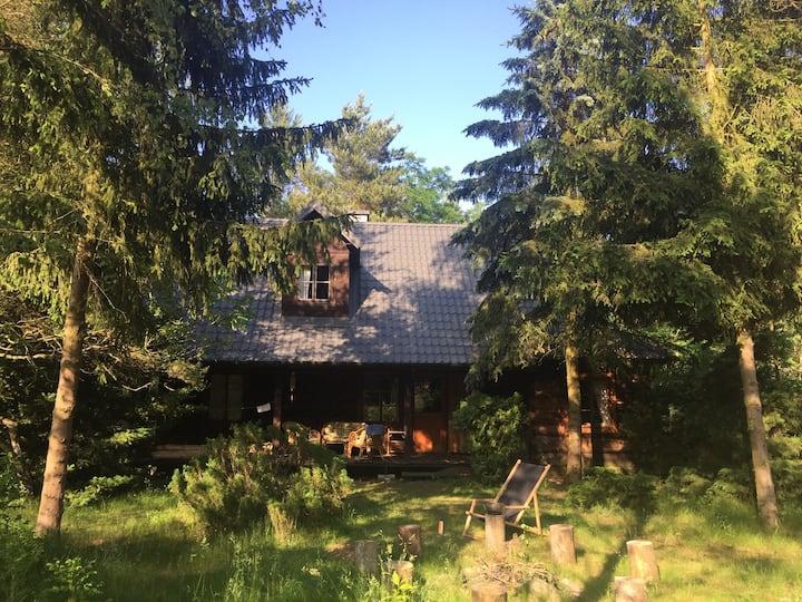 Słoneczny dom z bali nad rzeką Pilicą