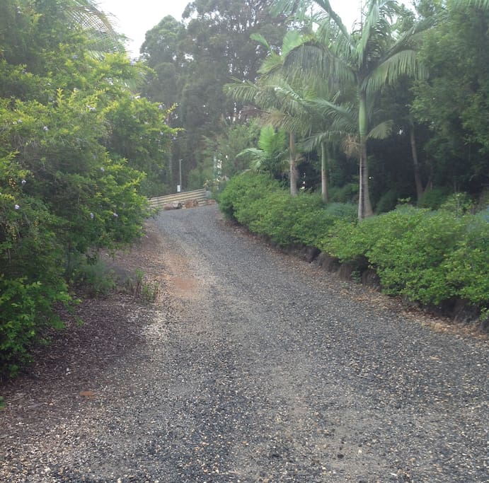 Driveway leading to house with expansive  gardens