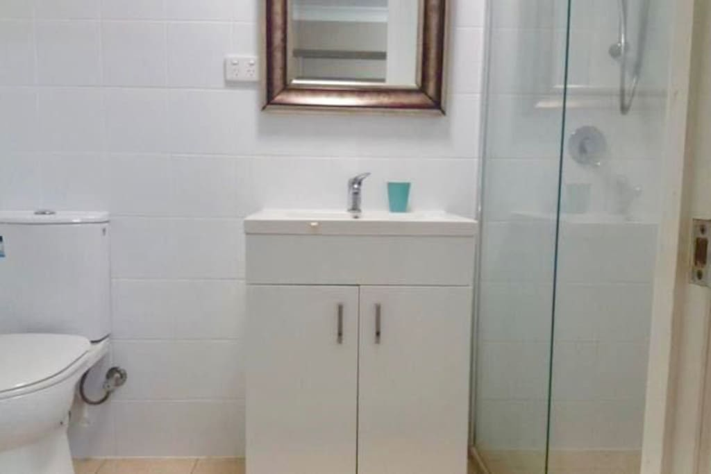Newly renovated bathroom with an extra large shower