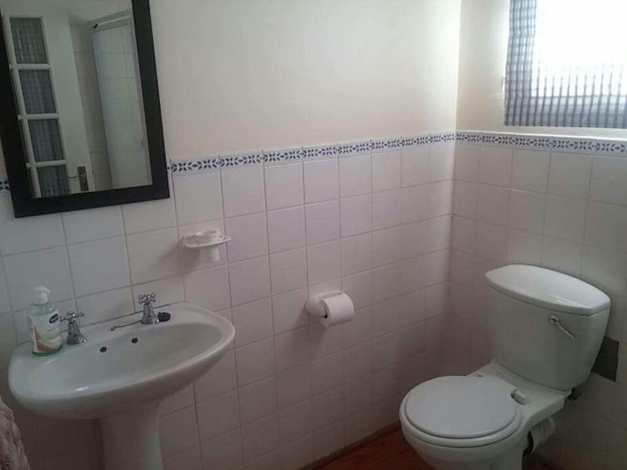 Basin & Toilet