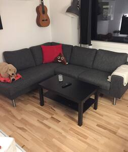 Cosy apartment in central Aalborg - Aalborg