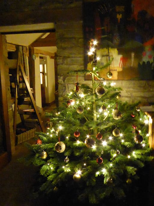 We are fully booked over the festive period- but we do have a handful of days just before Christmas.