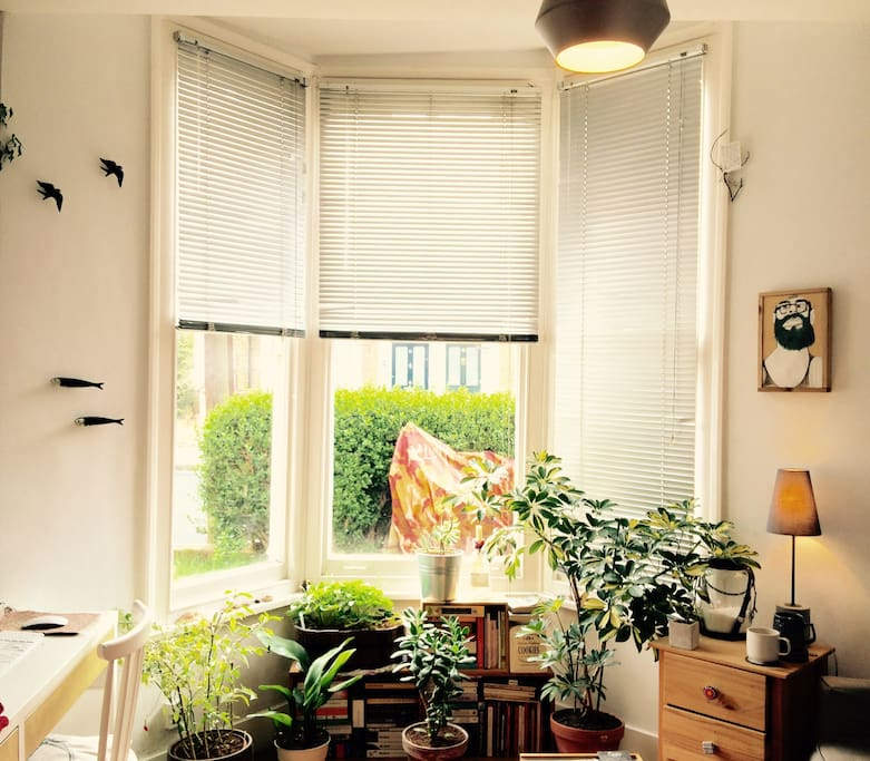 A bright living room window