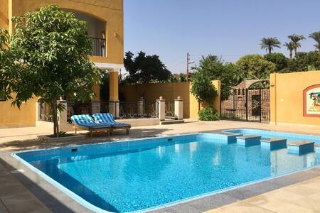 Deluxe Single Room in Hotel with Pool & Nile Views