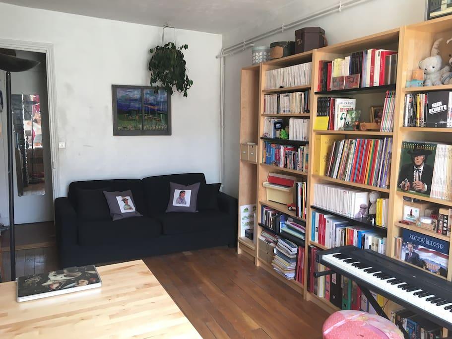 Library with a sofa / Bibliothèque avec canapé-lit