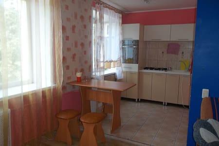 Уютная квартира в центре Вологды - Vologda