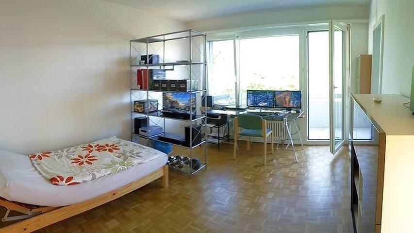 1 Zimmer Wohnung nahe Spalentor - Altstadt