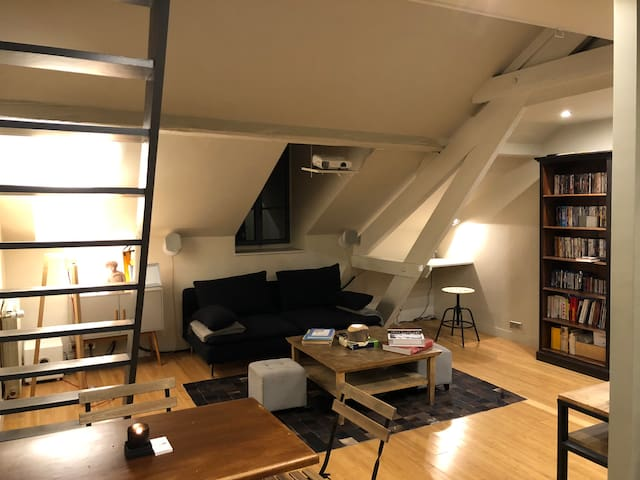 Appartement type loft