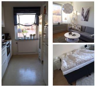 Lägenhet uthyres under vasaveckan - Mora - Apartment