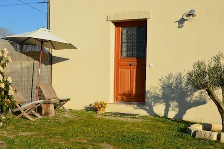 Au coeur des vignes, proche d'Aigues-Mortes