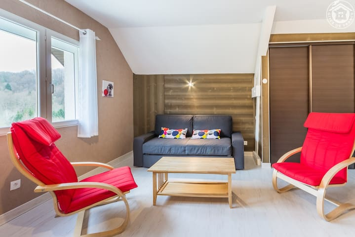 Salon ou chambre au choix avec canapé convertible pour le logement du 2ème étage