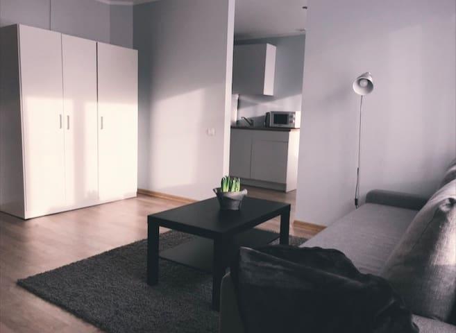 Cosy Apartment in Sigulda
