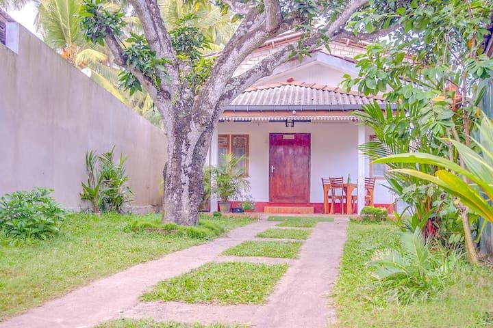 Mango Tree House
