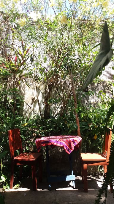 you can sit down with your laptop under the jasmine tree