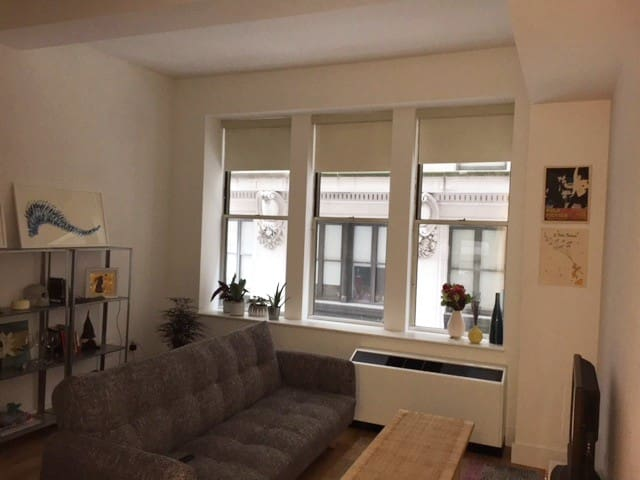 Luxury Building on Wall Street - Bright, Spacious and Comfortable!
