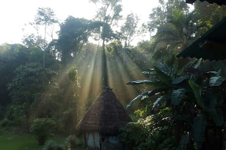 Heart of Drake Jungle- Off the Grid Experience - Agujitas de Drake - 独立屋