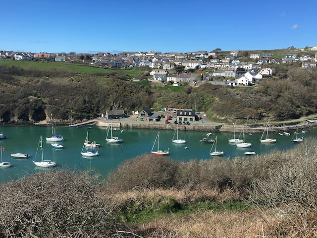 The harbour village of Solva - takes about 5/10 minutes to walk depending on how many photos you stop to take.