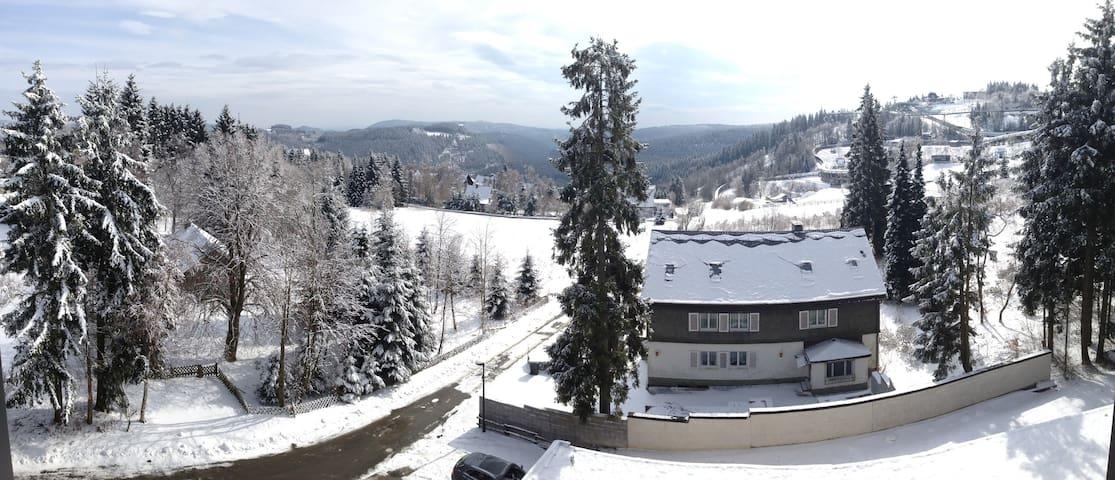 Wohnung mit Garage/Balkon direkt am Skigebiet