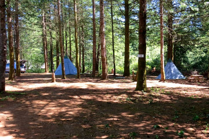 PICTURESQUE DRY CAMPSITE ON 14 AC