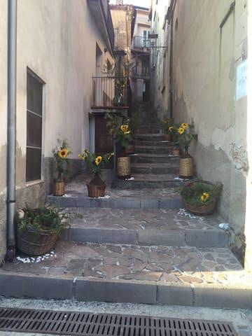 Zuid- Italië. Natuur, cultuur, rust - Cellara