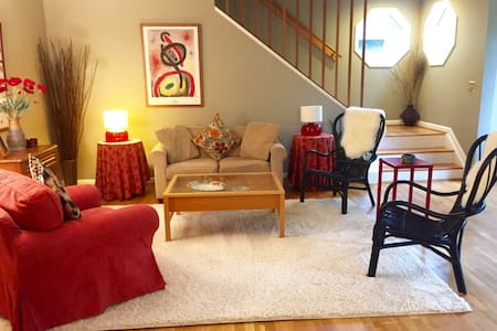 Spacious Beautiful Home with Soul - Takoma Park