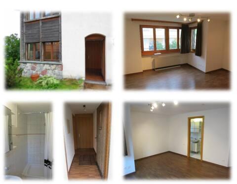 Schöne 1-Zimmerwohnung in Triesenberg