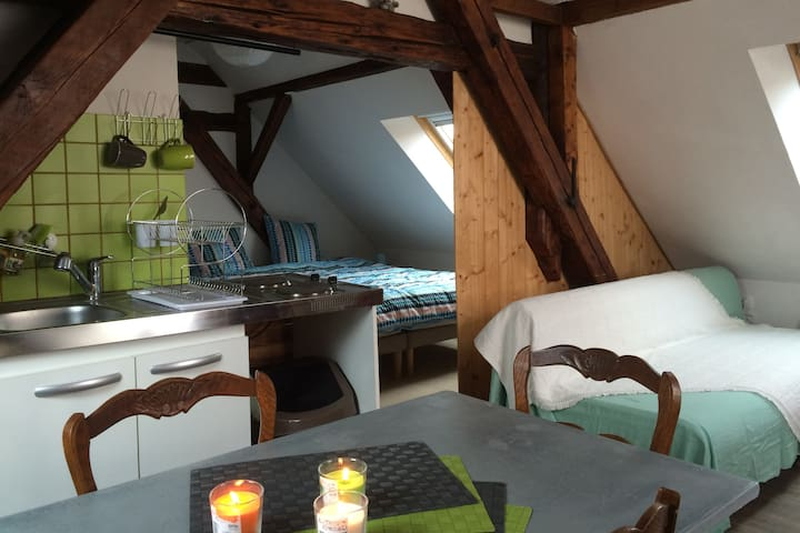 """Studio """"so heimlich"""" proche Strabourg - Oberhoffen-sur-Moder - Byt"""