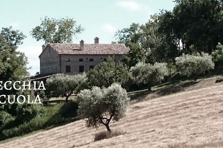 Bed and breakfast Le Marche Italy - Montefano