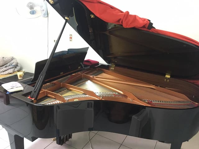 Grand Piano(ピアノ新品) for Houzhang Station - Daliao District - Flat