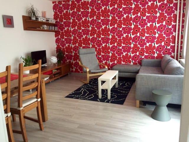 Útulný prostorný byt /Cosy big flat - Brno