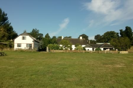 Coaxdon Barn holiday cottage - Axminster - House
