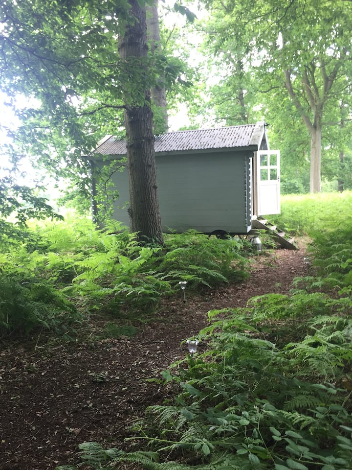 Shepherds Hut in idealic location in Cowden