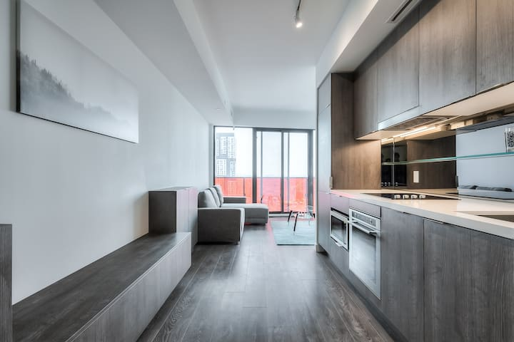 Luxurious 3 BR Apartment in Downtown Toronto