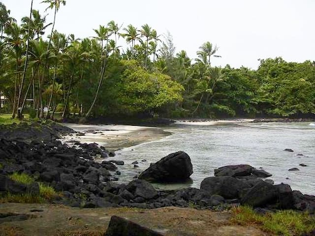 Haena Beach. Hike one hour from the neighborhood Puna trail to Haena (Shipman) beach. The is ribbons of pink white and black sand.