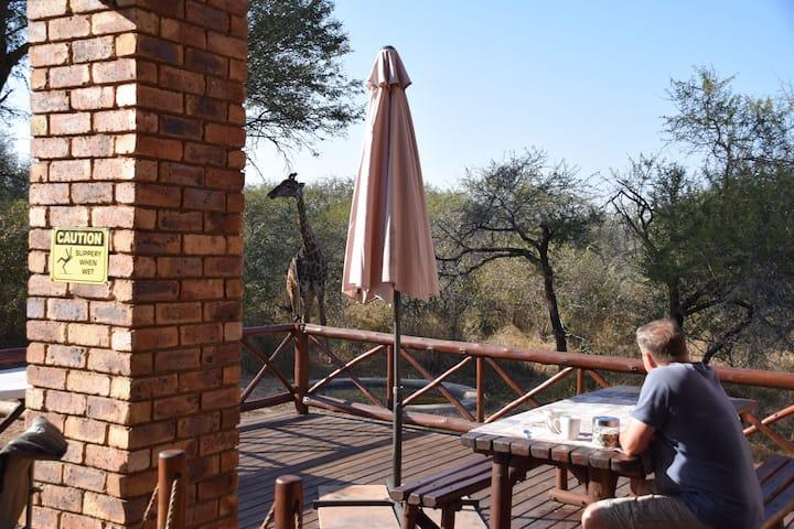 Khumbula iAfrica - Khumbula 2