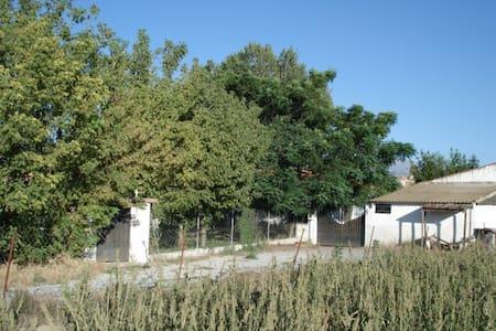 Maison individuelle dans propriété - Granada - Casa