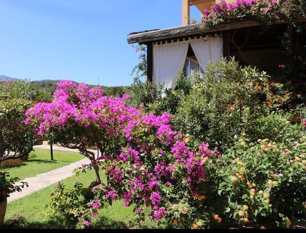 Casa in affitto Marina di Portisco