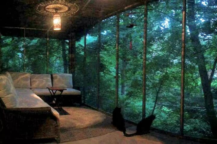 Room by the Ravine #2