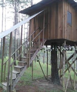 Tree house el Chaparral