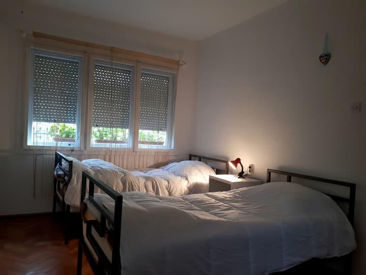 Edelweiss Hostel