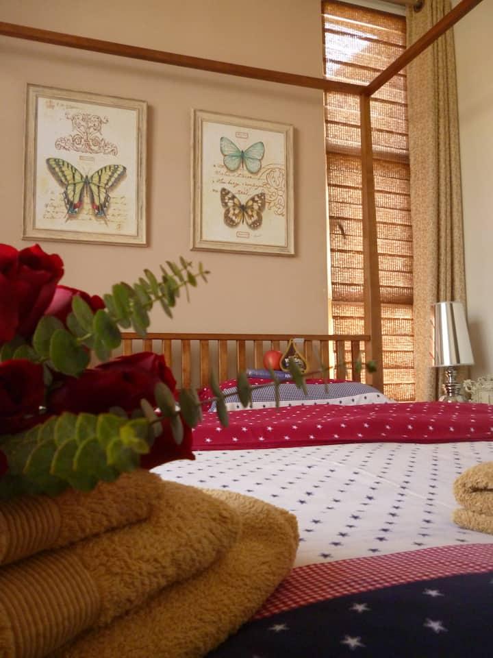 DOXA Low Budget Romantic Suite