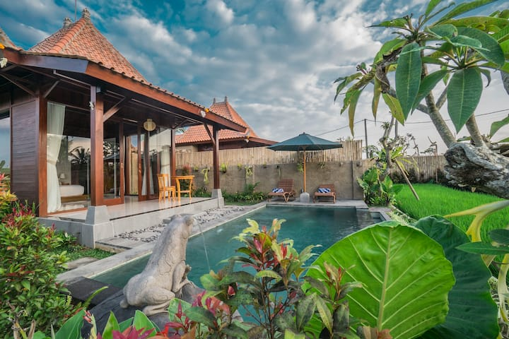 PRIVATE POOL charming wooden villa w/ Ubud Paddy!