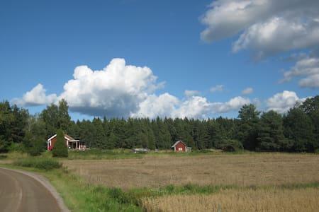 old swedish cottage - Mörlunda - Casa