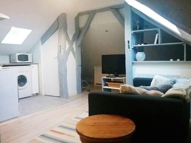 Sweet Home - Choisy-le-Roi - Flat