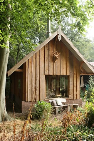 Romantisch boshuis op prachtige stille plek - Laren