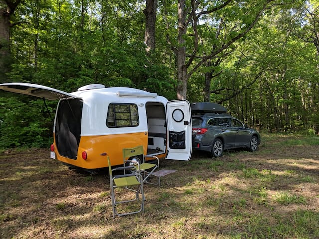 Private RV site in the woods with hook ups