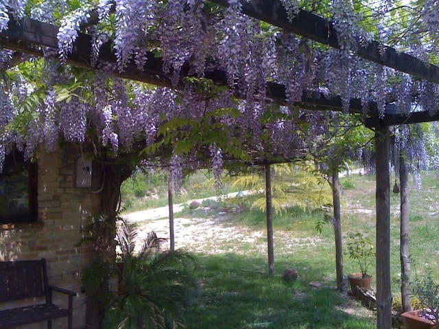Casa Bella Vista - Montottone - Rumah