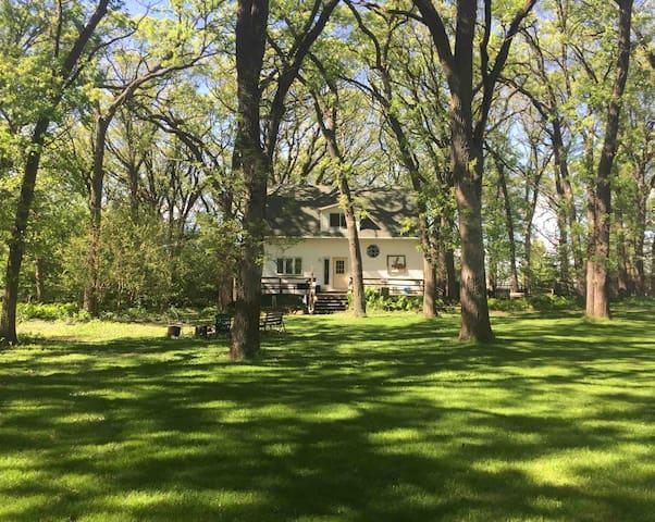 Moose Haus Lodge
