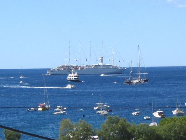 Room Hvar for 1, 2,3,persons,free today